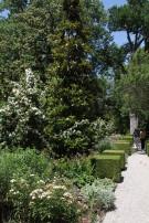 Path Through Gardens at Crespi Hicks Estate to Guest House