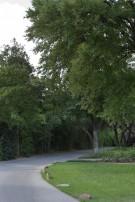 Informal Path Leading to Crespi Hicks Estate