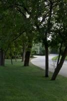 Informal Drive to Crespi Hicks Estate