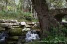 Streams and Creeks of Preston Hollow Estate Property
