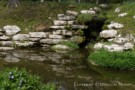 Stream Sited on Dallas Estate Property