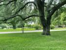 1930's Highland Park