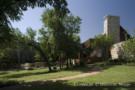 Shaded Property in Glen Abbey Gated Neighborhood
