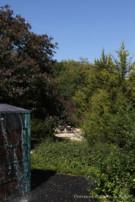 View Around Corner of Waterfall of Negative Edged Pool of Oglesby Greene Designed Modern Home in the Glen Abbey Neighborhood