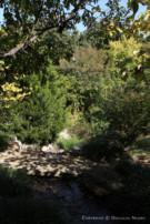 Land Surrounding Glen Abbey Home