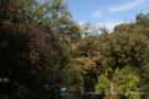 White Rock Creek Behind Glen Abbey Property