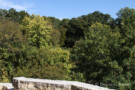 View of Nature Preserve From Oglesby Greene Designed Home