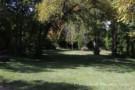 Shady Glen on Glen Abbey Estate Property