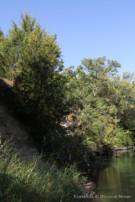White Rock Creek Runs Behind Glen Abbey Neighborhood Estate Property