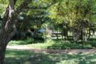 Paths Meander Around Property