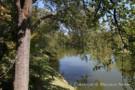 View of Creek Beside 6730 Northaven Road in Preston Hollow