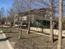 Architect-Designed by Scott Marek 60 Vanguard Way in Urban Reserve Neighborhood of East Dallas