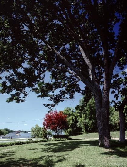 Property in White Rock Lake - 8100 Garland Road